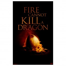 Game of Thrones Fire Cannot Kill A Dragon Poster [11×17]