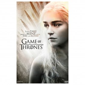 Game of Thrones I Will Take What Is Mine Poster [11×17]